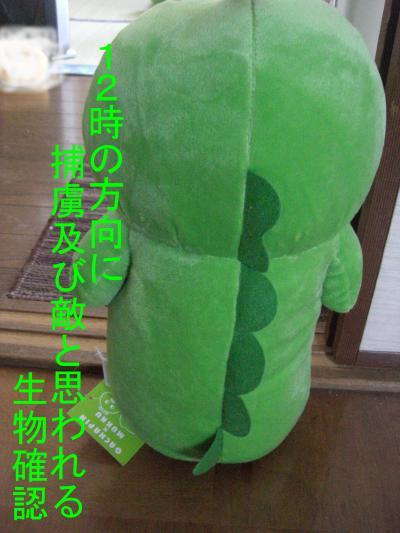 4_convert_20090616144510.jpg