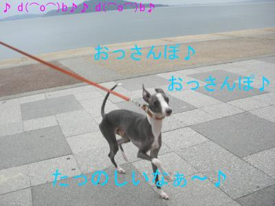 CIMG2977_convert_20090622161703.jpg