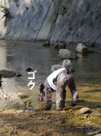 100821-4.jpg