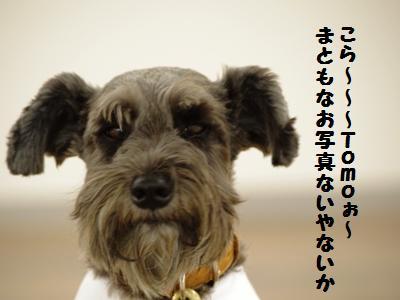 101024-14_20101025211257.jpg