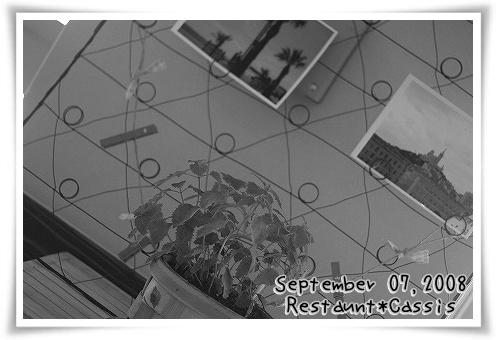 20080907_6452.jpg