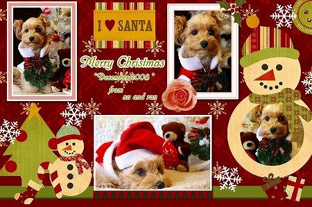 クリスマスカードa