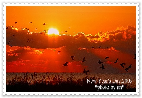 20090101_7983a.jpg