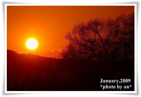 20090106_9209a.jpg