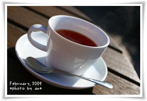 20090210_3852a.jpg