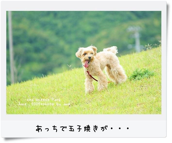 20090621_3530.jpg