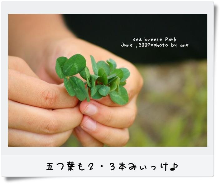 20090621_3559.jpg