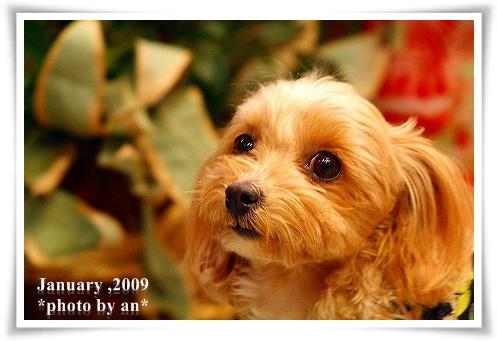 200912_8081a.jpg