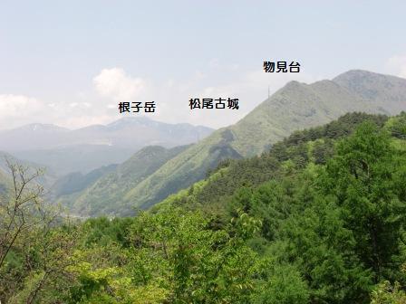 真田本城  (3)