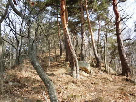kokuzou (2)