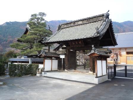 murakami (11)