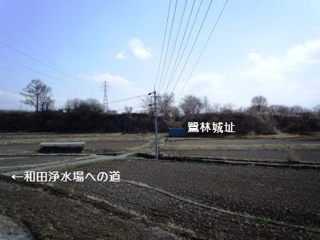 sagibayashi (27)