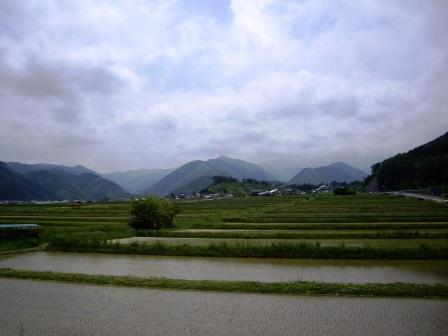 koyama (11)