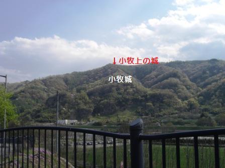小牧城 (40)
