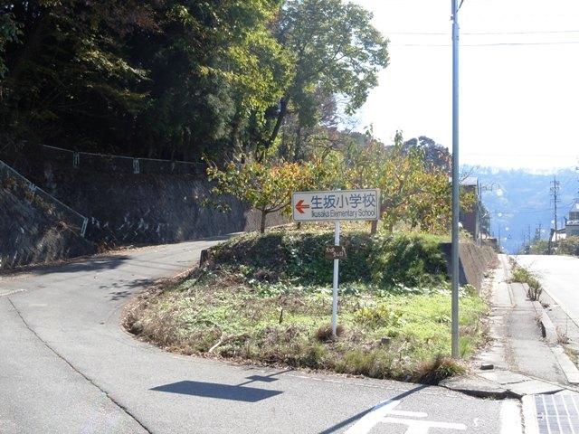 hikioojyo (100)