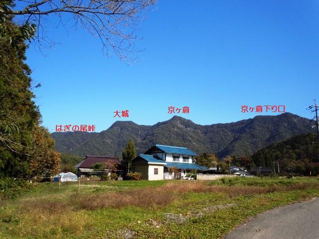 hikioojyo (101)