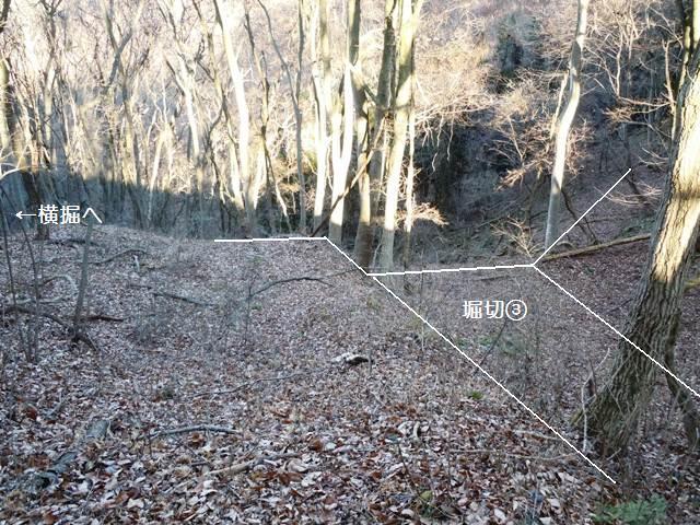 笹沢城(旧四賀村) (27)
