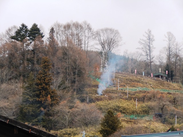 桜城 (59)