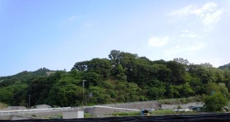 cmasugata.jpg