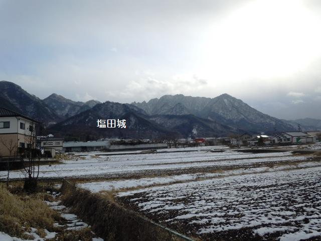 minekoya02.jpg