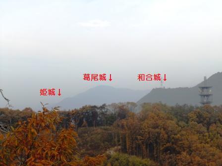 susuki011.jpg