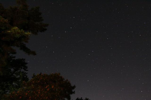5・14 夜空