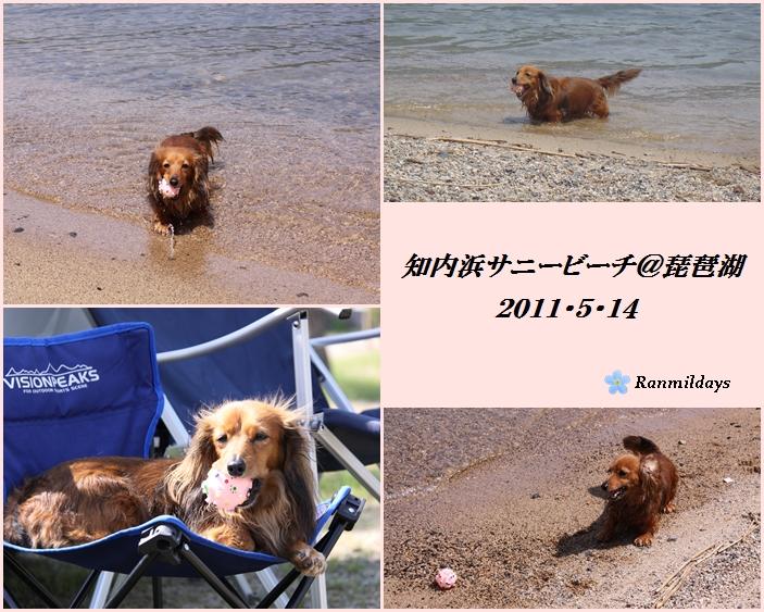 2011・5・14 びわこ