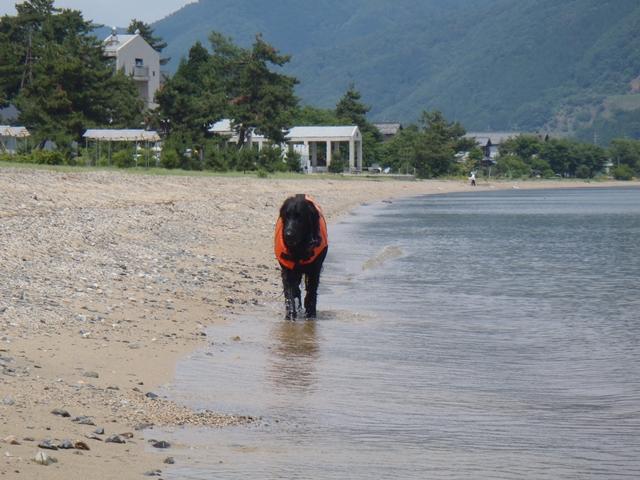 6・13 琵琶湖