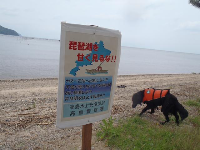 6・13 琵琶湖1
