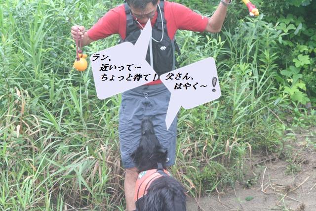 2011・8・6 らん1