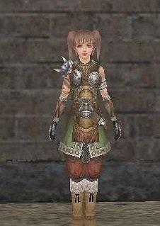 侠気のカルルスェヴニの鎧