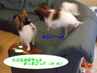 20-05_20080820180853.jpg