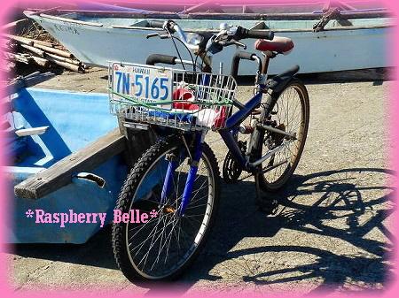 090111湘南自転車