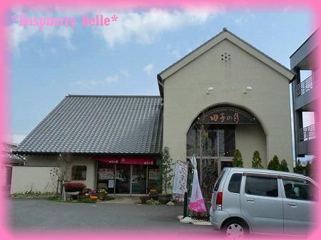 090321田子の月1