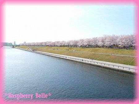 090405荒川桜祭