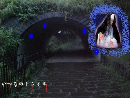 CIMG1372_20080817193453.jpg