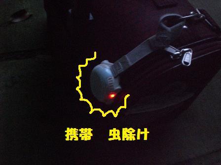 CIMG1373_20080817193635.jpg