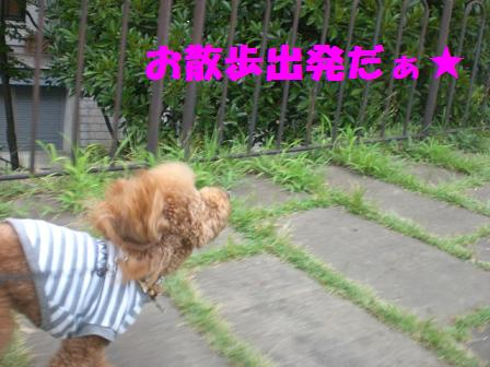 CIMG1680_20080823230004.jpg