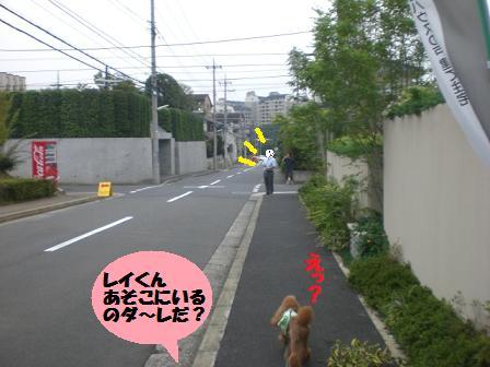 CIMG2401_20080915195910.jpg