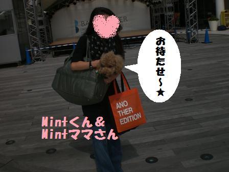 CIMG2693.jpg
