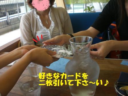 CIMG2754.jpg