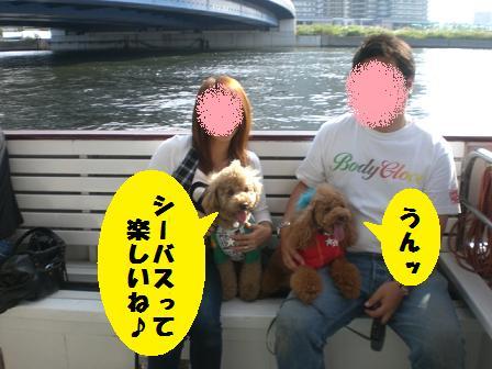 CIMG2860_20080927235005.jpg