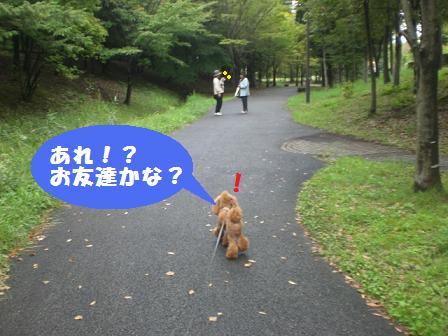 CIMG3097_20081001194105.jpg