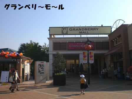CIMG3146_20081002210151.jpg