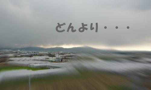 01-10-1_20090110161035.jpg