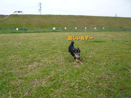 2008-12-12-03.jpg
