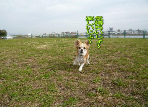2008-12-12-04.jpg