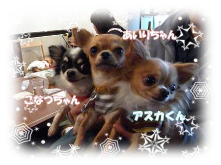 2008-12-15-11.jpg