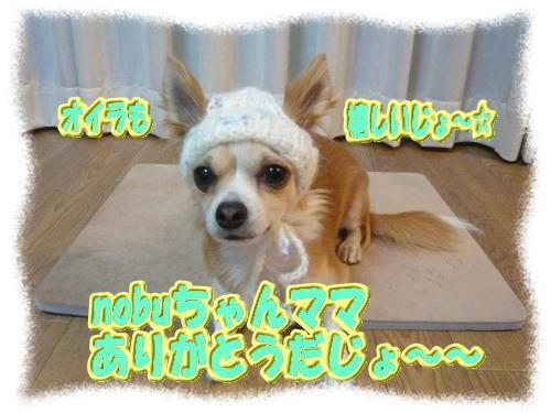 2008-12-18-03.jpg