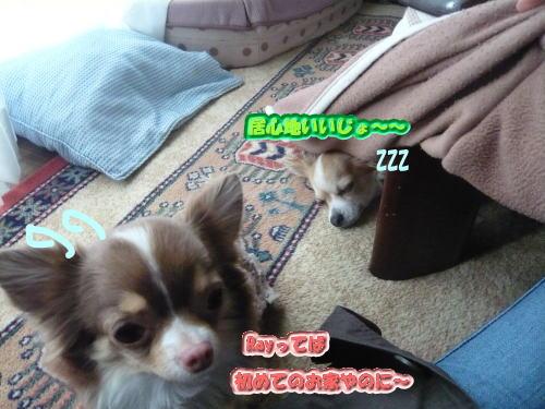 2008-12-26-08.jpg